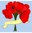 hand drawing bouquet of poppies vector image vector image