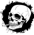 pattern of human skull with a cigarette vector image