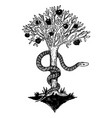 snake and tree of life engraving vector image