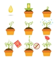 Planting The Seed Step By step Istruction vector image