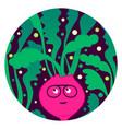 beetroot beat funny beet character vector image