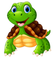 Cute turtle cartoon posing vector image