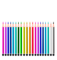 Set of Colored Pencils on White Background vector image