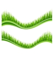 Two waves of green grass vector image