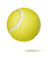 3d tennis ball classic yellow ball vector image