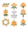 Set of the sea buckthorn logos signs and symbols vector image