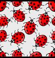cute ladybug on white background ladybird vector image