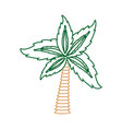 palm tree symbol neon lines vector image