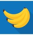 Banana in flat style vector image