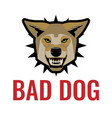 bad dog poster on white vector image