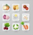 Infographic food vegetables flat lay idea hipster vector image vector image
