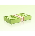 Packs of dollars money on green background vector image