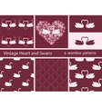 Vintage set love swans and heart vector image