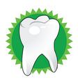 brush teeth vector image vector image