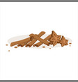 cinnamon sticks and stars of anise baking vector image