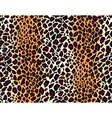 seamless jaguar skin pattern vector image
