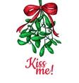 Kiss me under Mistletoe Christmas card with decor vector image
