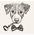 Sketch Jack Russell Terrier Dog with bow tie and vector image