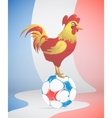 Football with France symbol red Rooster vector image