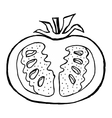 cutting tomato vector image vector image