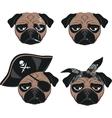 Set of funny pug vector image