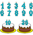Cake and candles vector image vector image