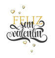 Happy valentines day Phrase Spanish handmade Feliz vector image