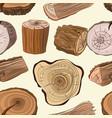 wood stumps set pattern vector image