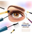 Eye Makeup Blurred Background Poster vector image