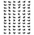horses in galloping vector image