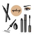 woman eye and makeup vector image