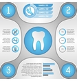 Four steps to healthy teeth vector image