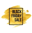 Black Friday Designs on gold blob vector image