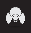 image of an dog poodle face vector image vector image