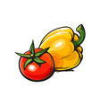 fresh whole ripe red tomato and yellow bell pepper vector image