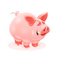 pink piggy young cartoon animal vector image