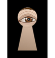 eye behind a keyhole vector image