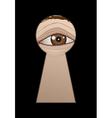 eye behind a keyhole vector image vector image