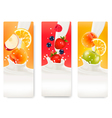 Three labels with different fruit falling into vector image vector image