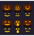 Halloween Pumpkins on Dark Background vector image