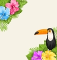 Nature Tropical Background with Toucan Hibiscus vector image