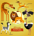 cute wild African animals vector image