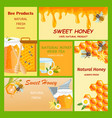 honey horizontal vertical and square banners vector image