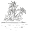 island with palm contours vector image