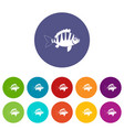 perch icons set flat vector image