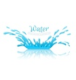 Water splash pool with drops vector image