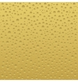 Beer or cheese background vector image