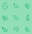 fruit outline isometric set vector image