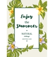 Tropical Summer Exotic Menu Fruits Card vector image