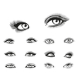 woman eyes set vector image